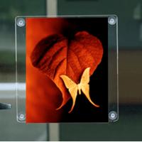 VF A4 (29,7x21 cm) dikey çift taraflı vantuzlu pleksi föylük..