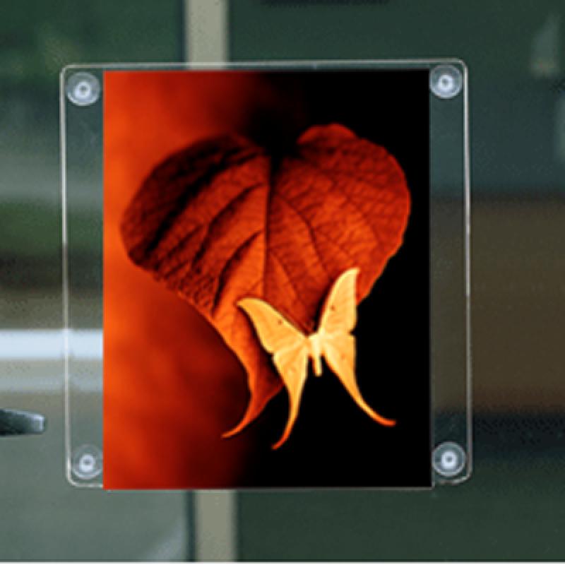 VF A4 (29,7x21 cm) dikey çift taraflı vantuzlu pleksi föylük